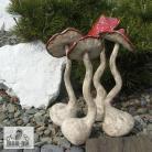 Ceramika i szkło grzyb,ogród,las,leśny
